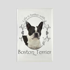 Lifes Better Boston Magnets