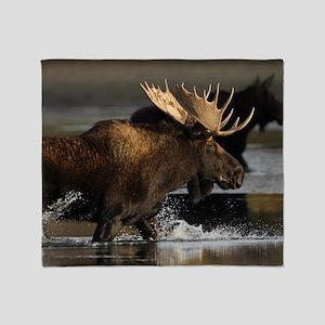 moose splashing in the water Throw Blanket