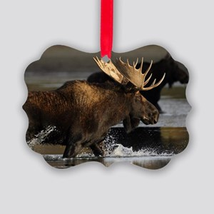 moose splashing in the water Picture Ornament