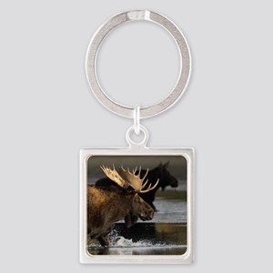 moose splashing in the water Square Keychain