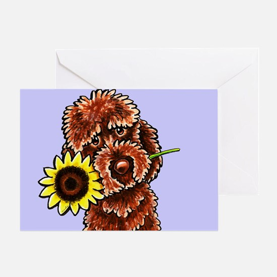 Sunny Chocolate Labrodoodle Greeting Cards