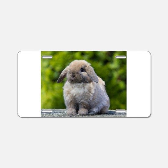 Cute Bunny Aluminum License Plate