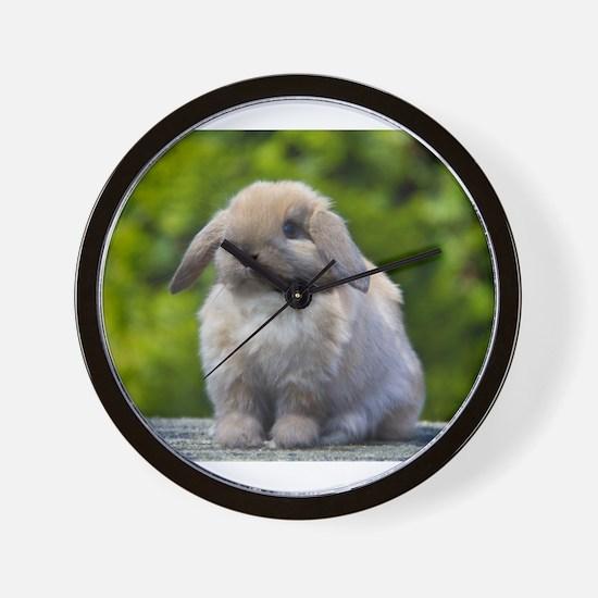 Unique Bunny rabbit Wall Clock