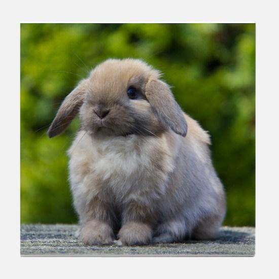 Cute Bunny Tile Coaster