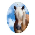 Palomino Pony Oval Ornament