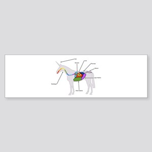 Unicorn Anatomy Bumper Sticker