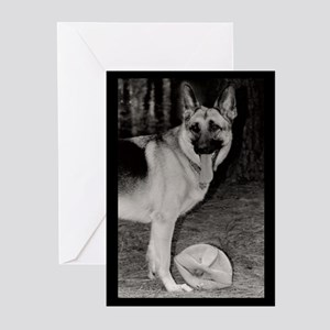 Skyy with Ball Greeting Cards (Pk of 10)