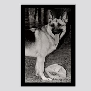 Skyy With Ball Postcards (Package of 8)