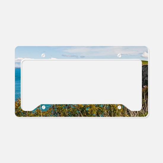Carrick-a-Rede Rope Bridge License Plate Holder