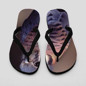 kestrel, falcon Flip Flops