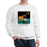 Eclipse Cartoon 9525 Sweatshirt