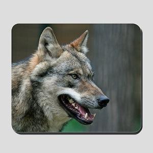 Wolf 002 Mousepad