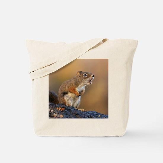 Singing Squirrel Tote Bag