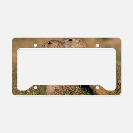The Guardian License Plate Holder
