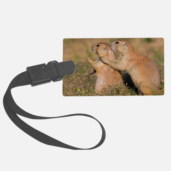 The Guardian Luggage Tag