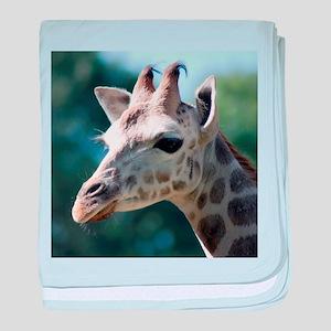 Rothschild Giraffe baby blanket