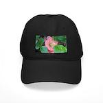 Camellia Japonica Black Cap