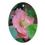 Camellia Japonica Ornament (Oval)