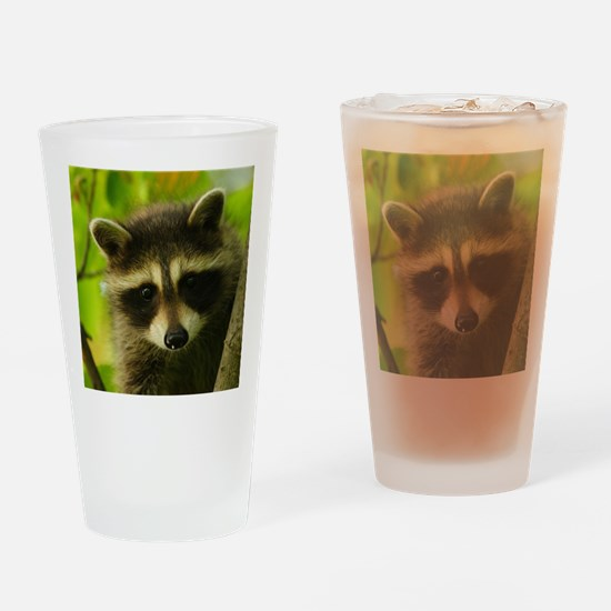 raccoon Drinking Glass