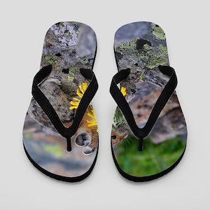 pika Flip Flops