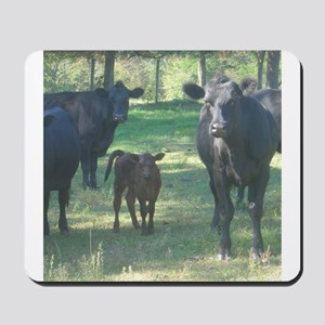 black angus Mousepad