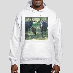 black angus Hooded Sweatshirt