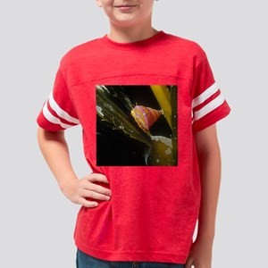 Kelp Snail Square Youth Football Shirt