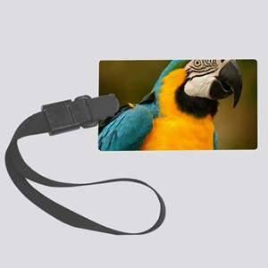 blue and gold macaw Large Luggage Tag