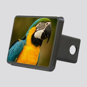 blue and gold macaw Rectangular Hitch Cover