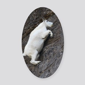 Mountain Goat Oval Car Magnet