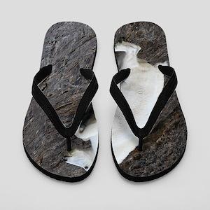 Mountain Goat Flip Flops