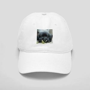 Back Lab Puppy Cap