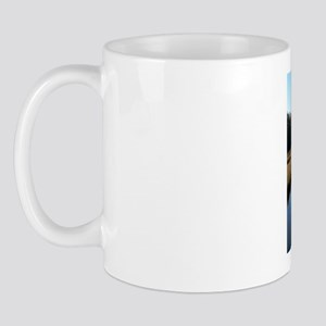 VIRGINA FALL LOW COUNTRY Mug