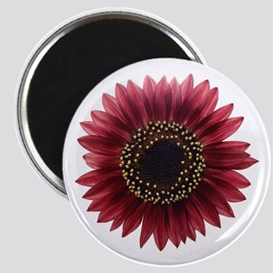 Ruby sunflower Magnets