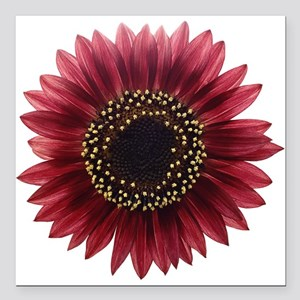 """Ruby sunflower Square Car Magnet 3"""" x 3"""""""