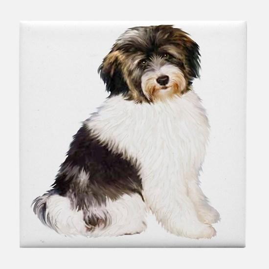 Tibetan Terrier (W) Tile Coaster