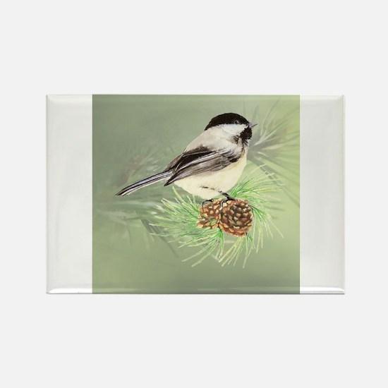 Watercolor Chickadee Bird in pine tree Magnets