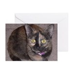Tort Calico Greeting Cards (Pk of 10)