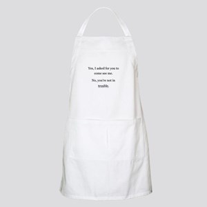No, You're not in trouble. BBQ Apron