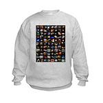 Hubble Space Telescope Kids Sweatshirt