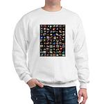 Hubble Space Telescope Sweatshirt