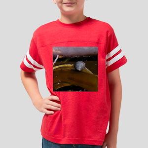 snail2TILE Youth Football Shirt