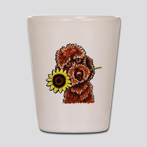 Sunny Chocolate Labrodoodle Shot Glass