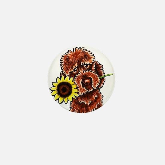 Sunny Chocolate Labrodoodle Mini Button