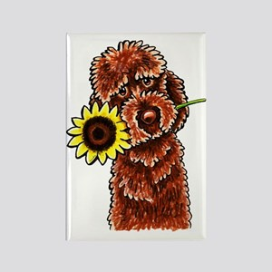 Sunny Chocolate Labrodoodle Magnets
