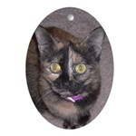 Tort Calico Oval Ornament