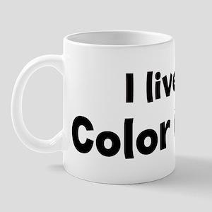 I Live for Color Guard Mug