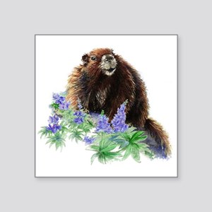 Cute Watercolor Marmot Animal in Mountain Lupin Fl