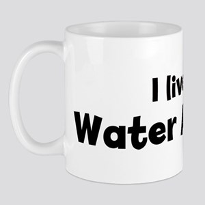 I Live for Water Aerobics Mug