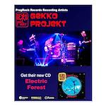 Gekko Projekt Poster